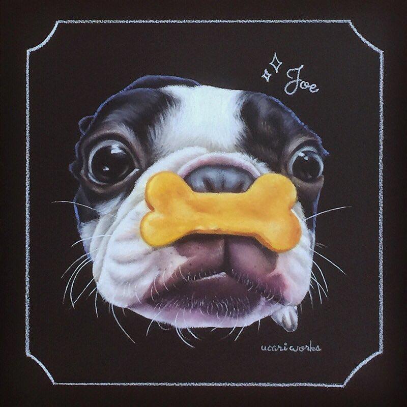 愛犬 似顔絵