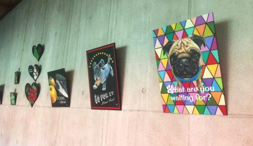 チョークアート展@八王子市長池公園 自然館 石のギャラリー