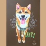 チョークアート 柴犬