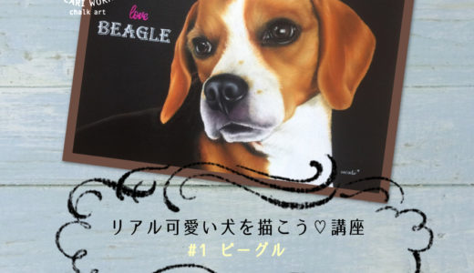 【5月】リアル可愛い犬を描こう講座 #1 ビーグル 開催しました!