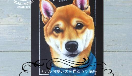 【7月】リアル可愛い犬を描こう講座