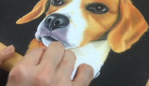 【6月】リアル可愛い犬を描こう講座 #1 ビーグル 開催しました!