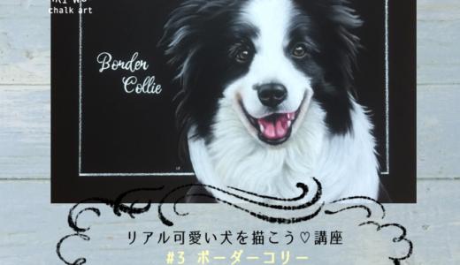 【開催予定】リアル可愛い犬を描こう講座
