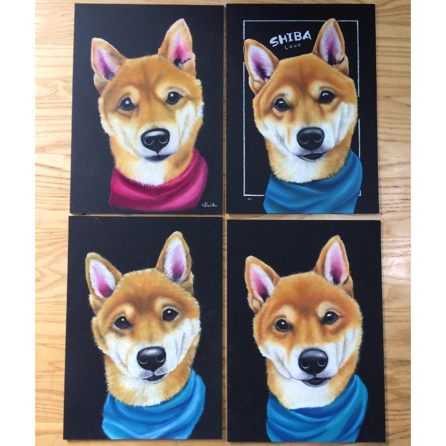 犬レッスン 柴犬