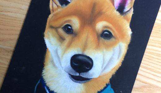 【観察力を磨く】柴犬レッスン開催しました!
