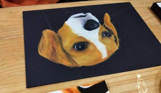 【年内最後】リアル可愛い犬を描こう講座 開催しました!