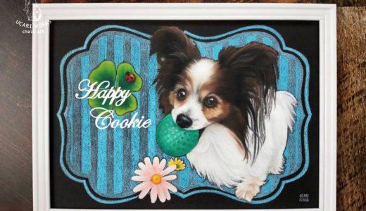 【愛犬似顔絵】パピヨンのクッキー君