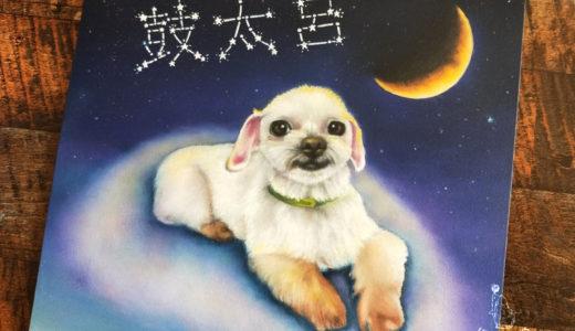 【愛犬似顔絵】マルチーズMIXの鼓太呂ちゃん